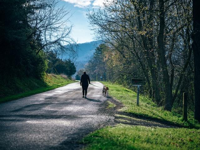 Promenader – livsviktig motion